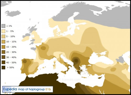 haplogroup-e1b1b_.jpg